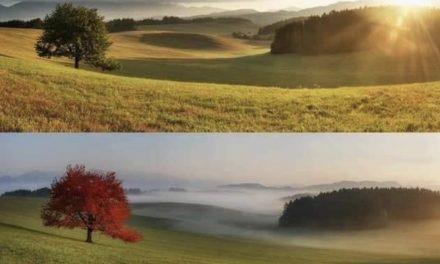 Вижте красотата в 4 сезона